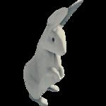 WhiteRabbitFarket.png