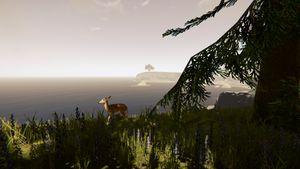 Deer-the-forest-1-0-dirty (4).jpg