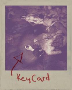 KeyCard1 Polaroid.png