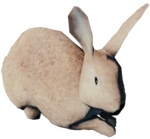 RabbitFarket.png