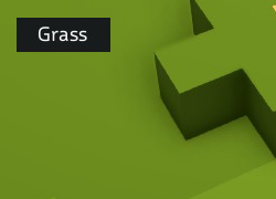 Grass outside.png