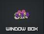 Windowbox 1.png