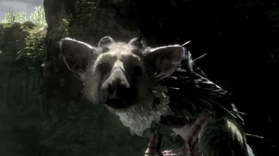 Trico - The Last Guardian Wiki