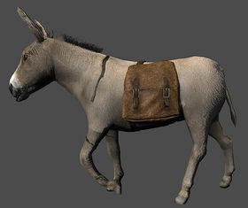 Donkey Saddle.jpg