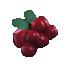 Northern Berries.png