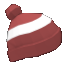 Winter cap2.png
