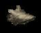 Ocean conch.png
