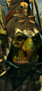 Grn night goblin shaman campaign 01 0.png