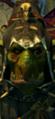 Grn night goblin shaman campaign 03 0.png