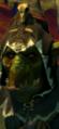 Grn night goblin shaman campaign 02 0.png