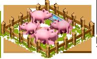Pig farm.png
