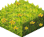 Yellow flower hedge.png