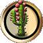 Plant cactus.png