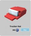 Truckerhat.png