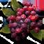 WildBerries L.png