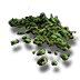 Dehydrated moss L.png