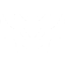 File:Ability Boom Bot.png