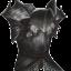 Necromancers Armor