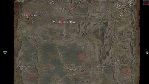 Sacred Bush Circles.jpg