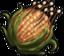 Dwarf Corn.png