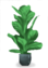 Wyatt's Plant 3.png
