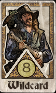 DC Wildcard S.png