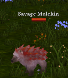 Savage Molekin