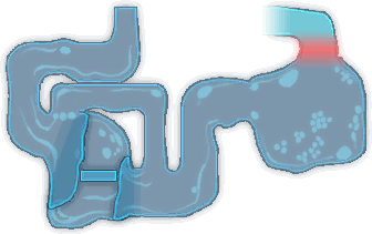 Hoarfrost Hollow Map 4.png