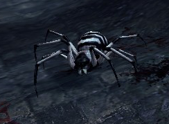 Striped Spider (Enemy).png