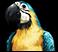 Pramin (NPC Icon).png