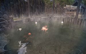 Hot Springs Interior.jpg