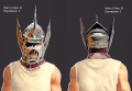 Lann Screenshot Examples - Helms.png