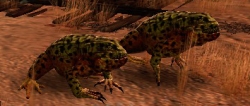 Poison Toad (Enemy).png
