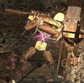 Wood Carpenter (Enemy).png