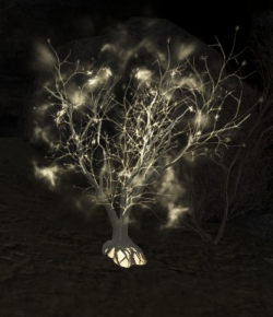 Luminary Tree (Enemy).png
