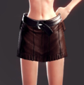 Sharpshooter Leather Armor Pants (Lynn 1).png