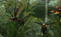 Island Wasp (Enemy).png