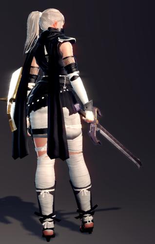 Leather Ninja Set (Fiona 2).png