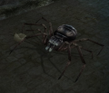 Soldier Spider (Enemy).png