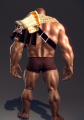 Elite Commander Chestpiece (Karok 2).png