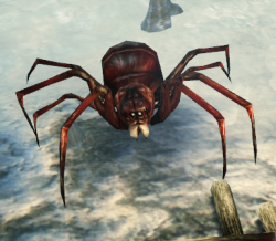 Red Spider (Enemy).png