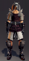 Exquisite War Edge Battle Suit Set (Lann 1).png