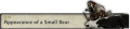 Appearance of a Small Bear Tab.png