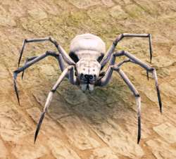White Spider (Enemy).png