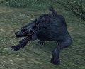 Infected Hounds (Enemy).png