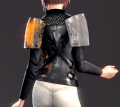 Light Plate Chestpiece (Lynn 2).png