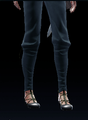 Western Shoes (Fiona 1).png