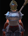 Reinforced Shoulder Guard (Evie 1).png