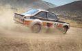 DiRT Rally 12.jpg