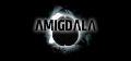 Amigdala.jpg